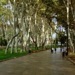 Parco Gulhane