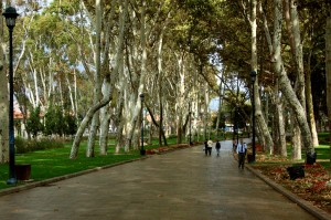 Istanbul - Gulhane Park