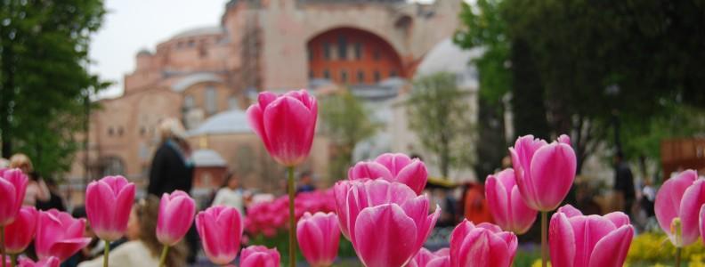 Festival dei Tulipani di Istanbul
